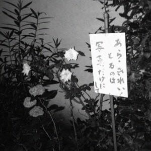 まかさんぽ 西新宿